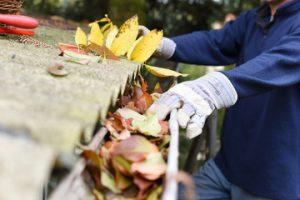 sydney gutter and roof restoration